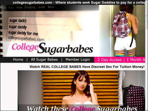 college sugar babes